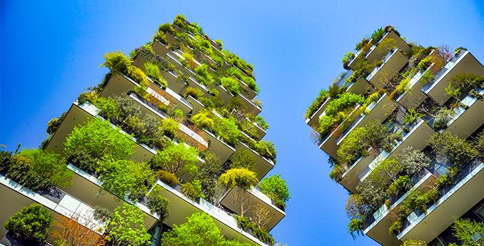 Gribi Services Sustainable Development
